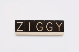 ZIGGY Wooden Letter Tile and Slider from One Two Tree Designs
